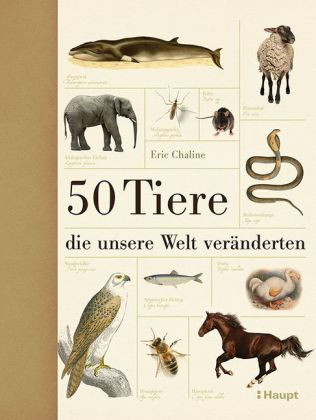 50Tiere